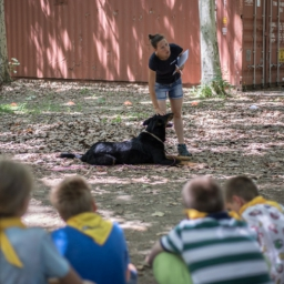 mcc-fit-nyari-tabor-tiszaliget-2019-julius-15-5evfolyam-2556.jpg