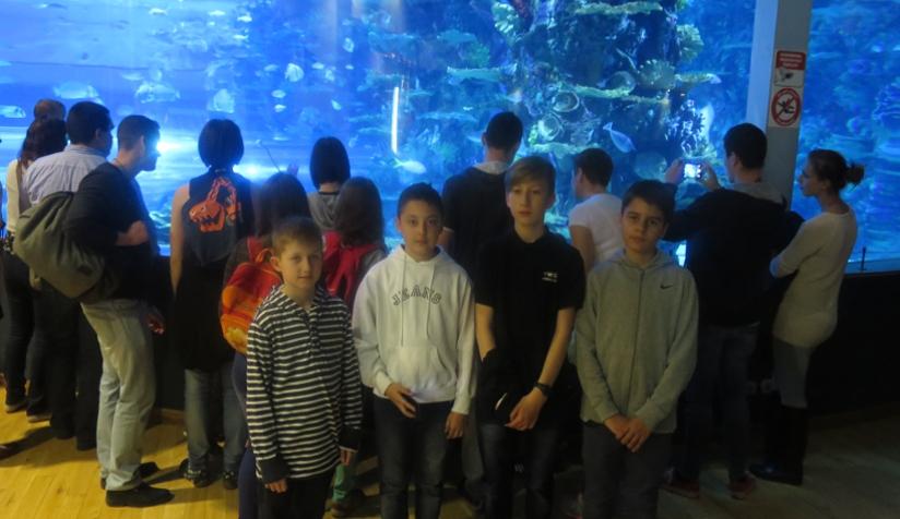 Cápák, ráják és varázsóra - élményprogram külső helyszíneken